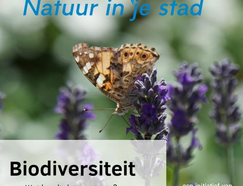 Biodiversiteit: wat en waarom