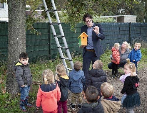 Haarlem plaatst nestkasten tegen eikenprocessierups