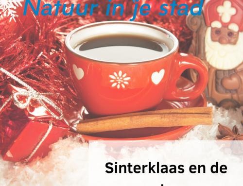 Sinterklaas en de natuur