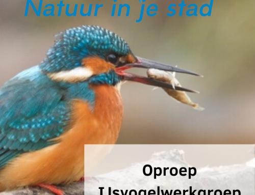 De IJsvogelwerkgroep heeft jouw hulp nodig!