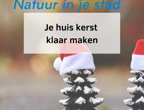 Je huis kerst klaar maken met de natuur
