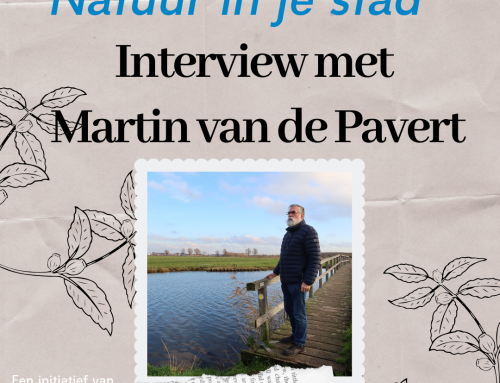 Inter­view: Mar­tin van de Pavert