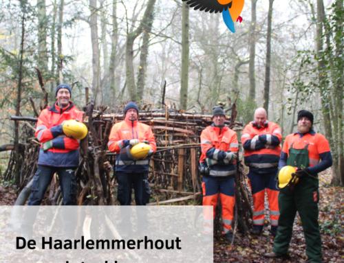 Zo wordt de Haarlemmerhout winterklaar