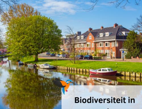 Biodiversiteit in Haarlem